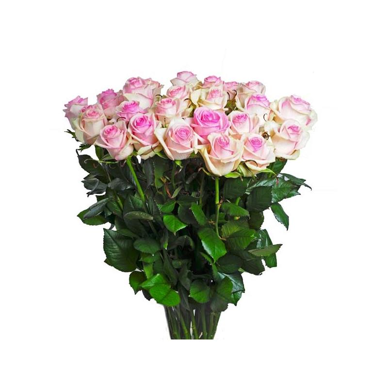 Bouquet Etna